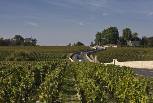葡萄酒产区 > 梅多克产区(medoc)    人们赞叹梅多克的魅力风景,飘香