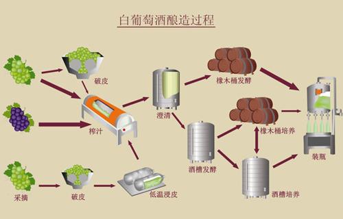 白葡萄酒的釀造過程