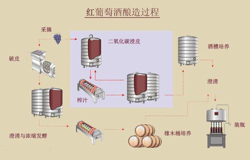 红葡萄酒的酿造过程