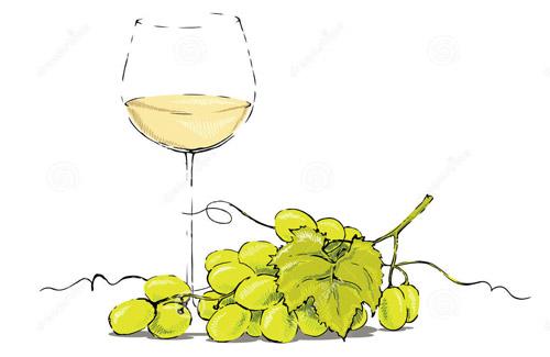 对葡萄酒酸度的认识
