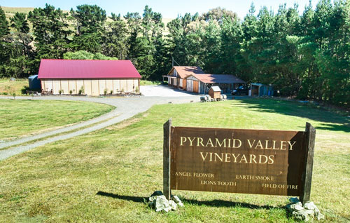 金字塔谷酒庄(Pyramid Valley Vineyards)